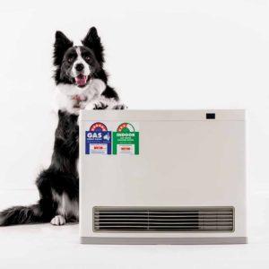 rinnai portable gas heater